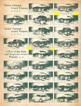 List of 1951 Fisher Body Craftsmans Guild winners, showing duplicate awards made when GM Employee relatives won