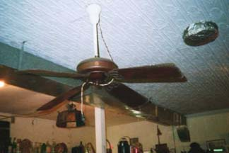 Ceiling Fan in Moorefield West Virginia
