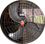 Diehl Floor Fan front view