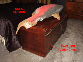 Cedar Chest and Sofa Salmon