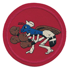 Squadron patch for VF-72