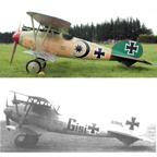 The Albatros D. V