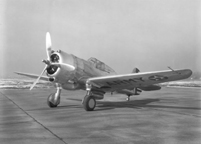The Curtiss P-36 hawk