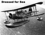 The Curtiss SOC2 Seagull Flotation landing configuration