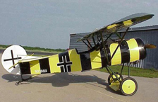 The Fokker D. VIII