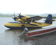 The Grumman Widgeon