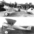 The Pfalz D.III