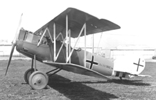 The Pfalz D.X11