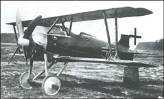 The Siemens-Schuckert D. IV