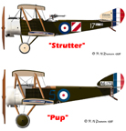 Comparison of the Sopwith Strutter and Pup airplanes